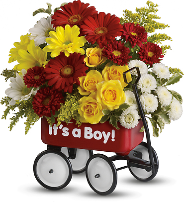 Baby\'s Wow Wagon by Teleflora- Boy